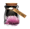 Picture of Crystal Wish Flower Assorted
